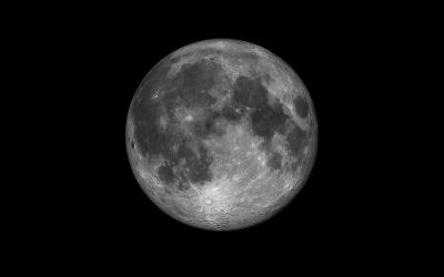 A Year of the Moon in 2021
