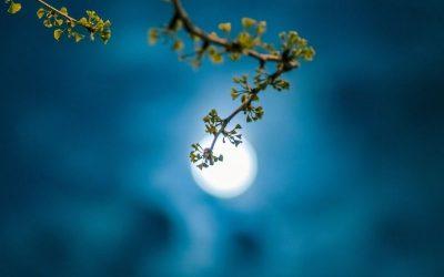 April New Moon 2021