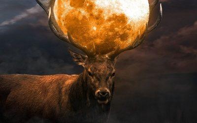 July 2021 New Moon